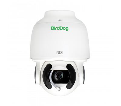BirdDog Eyes A200 PTZ Camera