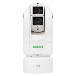 BirdDog Eyes A300 IP67 SDI NDI PTZ Camera
