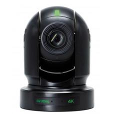 BirdDog Eyes P400 10-Bit NDI 4K Camera Black