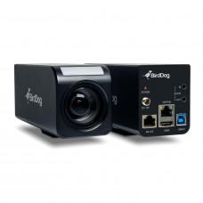 BirdDog PF120 1080p Full NDI Box Camera 20x Optical Zoom