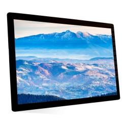 Bluefin 49 Inch LCD Standard Brightsign Built-In BLFN-20-3004-1080